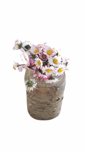 Petit pot Béton et Bouquet de Pâquerettes